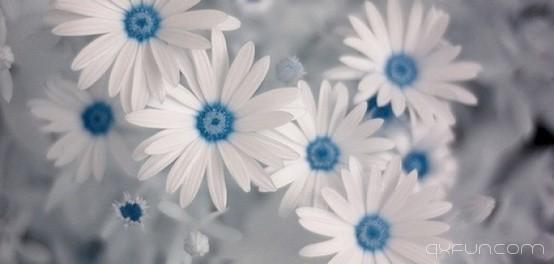 走在爱你的路上 我不辛苦 - 白花