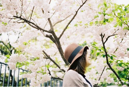 你的幸福,常常在别人眼里 -清新范(Qxfun.com)
