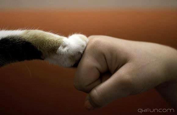 爱最美的距离,是彼此的信任 - 清新范(Qxfun.com)