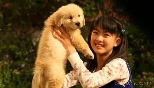 地球人看后都泪崩的九部狗狗电影:我和狗狗的十个约定 - 清新范(Qxfun.com)