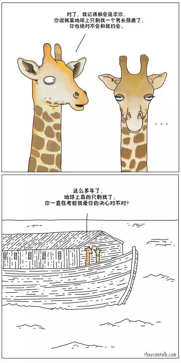 如果动物会说话