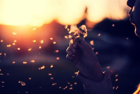 最甜美的是爱情,最苦涩的也是爱情。