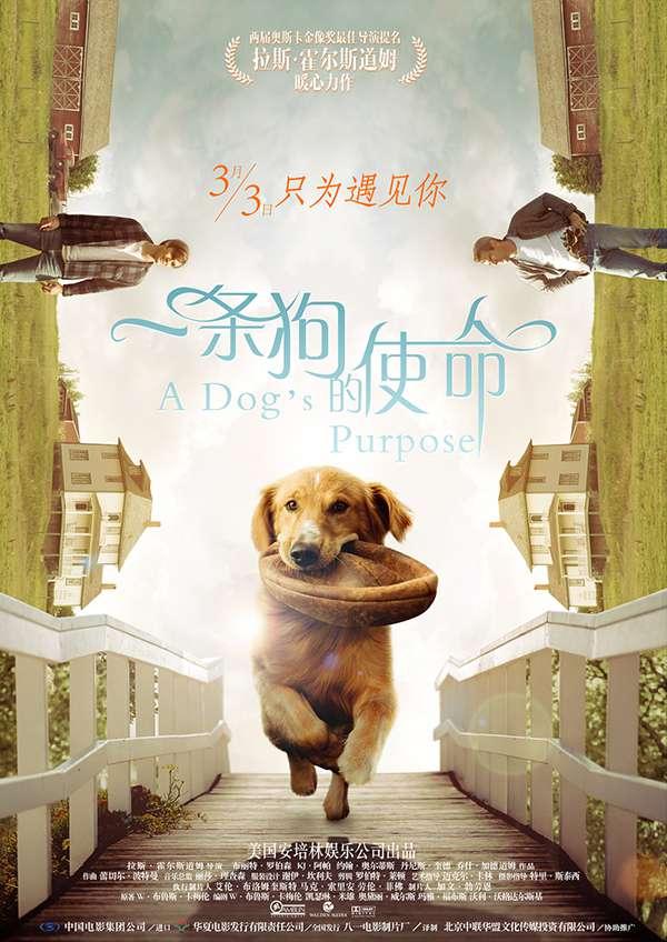 [一条狗的使命.A Dog's Purpose][国英双语中文字幕]1080P下载